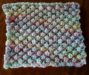 Dishcloth-Raspberry Stitch