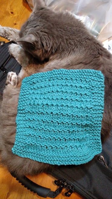 Dishcloth-RidgeStitch