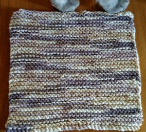 Dishcloth-Garterstraight-3