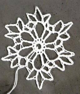 snowflake27